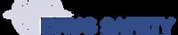Logo_BussPartner_DSNav