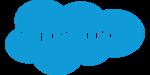 Logo_BussPartner_SalesForce